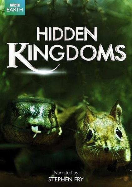 隐秘王国 (Hidden Kingdoms)