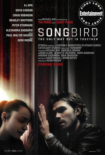 鸣鸟(Songbird)